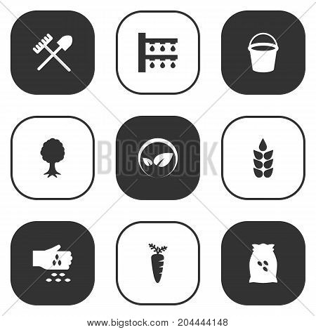 Collection Of Timber, Rake, Grain And Other Elements.  Set Of 9 Agriculture Icons Set.