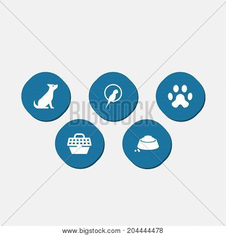 Collection Of Footprint, Pet Crate, Bird And Other Elements.  Set Of 5 Animals Icons Set.