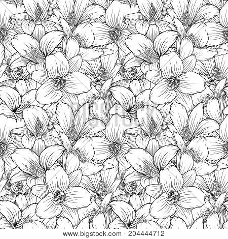 Beautiful monochrome black and white seamless pattern with lilies. Hand-drawn contour lines. design greeting card and invitation of the wedding birthday Valentine s Day mother s day other holiday