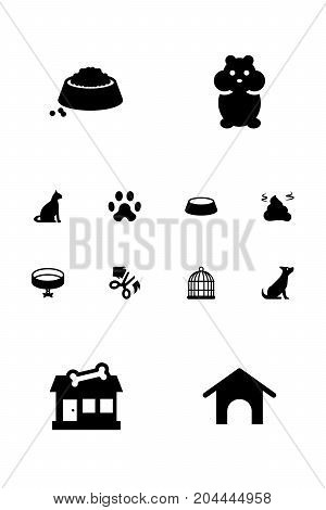 Collection Of Footprint, Sitting, Dog And Other Elements.  Set Of 12 Mammal Icons Set.