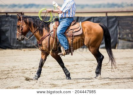 Cowboy Riding A Roping Horse At The Rodeo