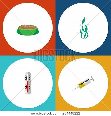 Flat Icon Pets Set Of Seaweed, Temperature Measurement, Rabbit Meal And Other Vector Objects
