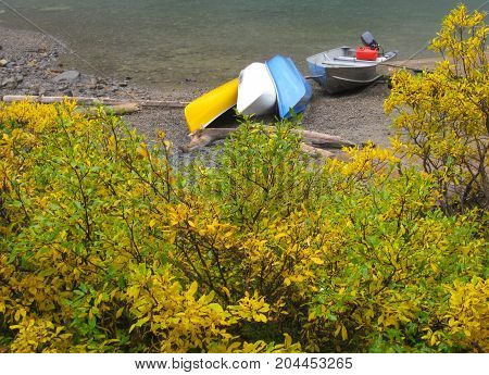 Boats left for the day on the edge of a river