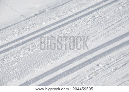 Professional Cross country ski tracks in winter
