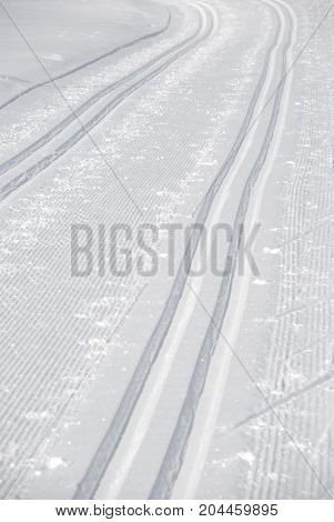 professional cross country skiing tracks in winter