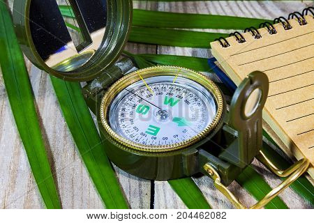 Compass lying on wooden boards, surrounded by tropical ferns, Notepad