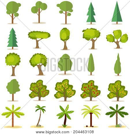 Trees a large set of trees. Christmas tree fruit tree palm tree. Flat design vector illustration vector.