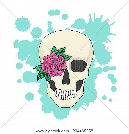 Human skull with flower on the background of colorful blots.