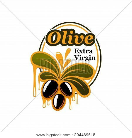 Black olive bunch with leaf isolated badge. Natural olive product and extra virgin oil label with ripe fruit, green branch and oil splashes for food packaging design