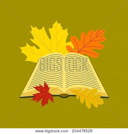 flat icon on stylish background school open book leaves