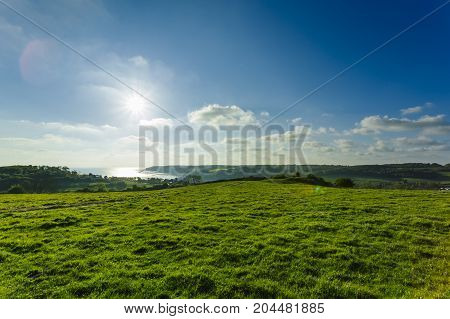 Green wheat field on a bright sunny day with sunbeams. Country landscape, agricultural fields, grassy meadows and farmlands in spring. Environment friendly farming, industrial agriculture concept