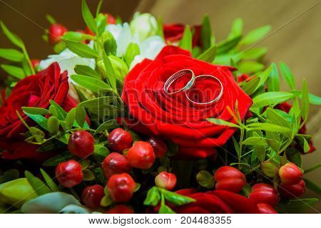 Two Gold Wedding Rings Lying On A Red Rose.