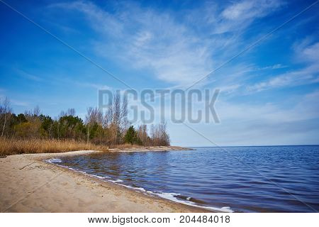 Shore of a lake with dry reeds.