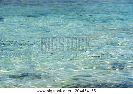 Background - the seabed through the sparkling clear water. Copy space for text