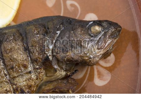 Head of carp baked on a clay plate. Photo can be used as a whole background.