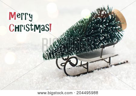 Small fir tree on white sledge. Merry Christmas greeting card on snow background. Copy space