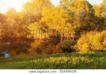 Autumn landscape. Forest autumn trees near the river at the autumn sunset. Sunny autumn landscape scene. Autumn trees lit by sunlight. Autumn forest landscape scene. Autumn nature