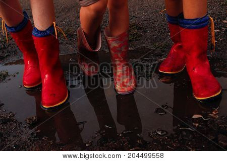 Three children in red rubber boots play in a puddle after a rain