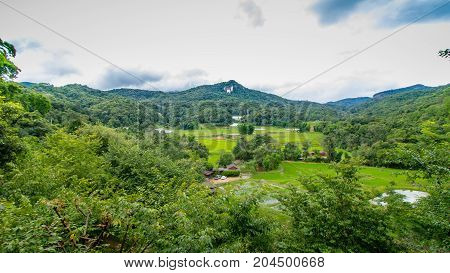 High angle view of Rice fields and mountains.