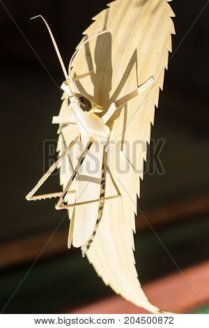 grasshopper made forn palipot palm leaf wicker work