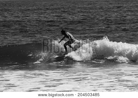 Surfing In Sea Girt New Jersey