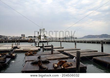 San Francisco Pier, Usa