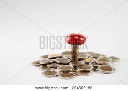 Mushroom Plant Growing Out Of Gold Coins Isolated On White