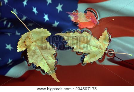 Autumn leaves lie in water on an American flag