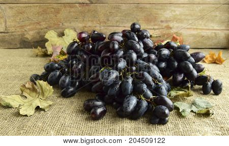 The bunch of the ripened black grapes is on a wooden dish.