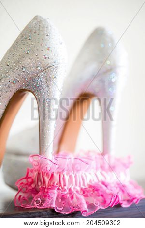 Shoes and Bridal pink Garter white background