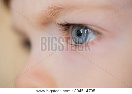 Closeup Of Eyes Of A Blue-eyed Child With Long Eyelashes