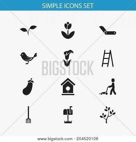 Set Of 12 Editable Agriculture Icons. Includes Symbols Such As Sparrow, Stairway, Lily And More