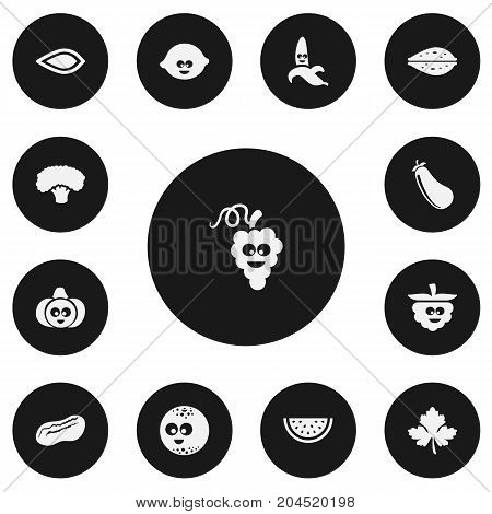 Set Of 13 Editable Kitchenware Icons. Includes Symbols Such As Jungle Fruit, Lemon, Tree And More