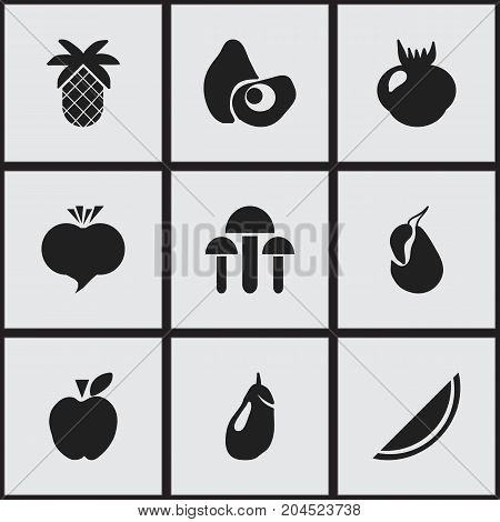 Set Of 9 Editable Fruits Icons. Includes Symbols Such As Champignon, Jonagold, Tropical Fruit And More