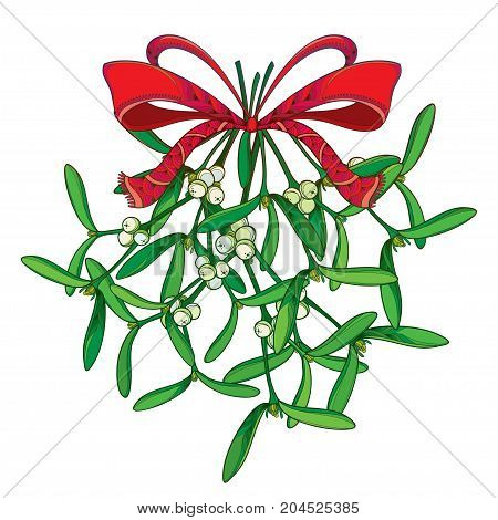 Vector bunch with outline Mistletoe and ornate red bow with ribbon isolated on white. Green leaves, berry and branch of Mistletoe in contour style for Christmas winter design and decoration.