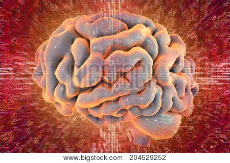 Human brain on colorful background, 3D illustration. Conceptual image for informational streames coming to brain