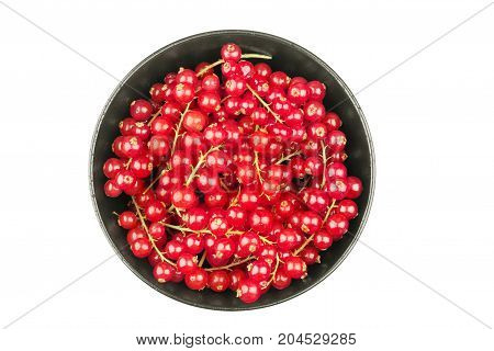 Fresh red currants in bowl on a white background close up