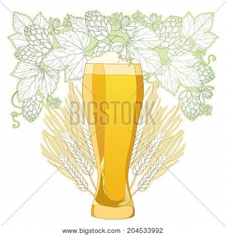 Vector glass of froth beer with ornate wreath of Hops and barley ears isolated on white. Contour hops, barley for Oktoberfest, beer and brewery decor. Beer elements in contour style for brewery design