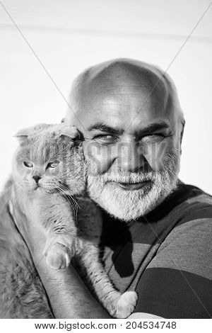 Elderly man hairless with kind smiling handsome face silver beard holding cute gray cat domestic pet isolated on white background