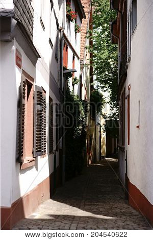 The photograph of a narrow alley between two buildings with a backyard.