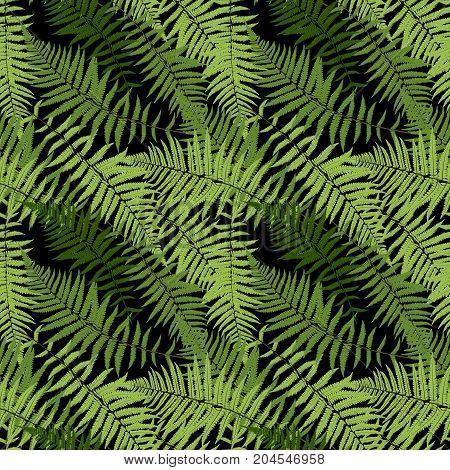 Fern Leaf Vector Fern Leaf Vector Seamless Pattern Background Illustration  EPS10