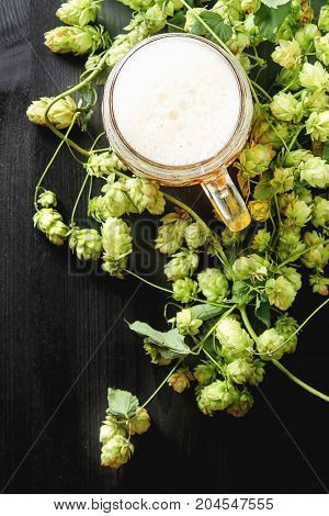 A Glass Of Beer, Production Ingredients. Fresh-picked Whole Shop