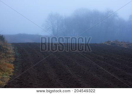 Plowed field in misty forest. Wet weather. Autumn