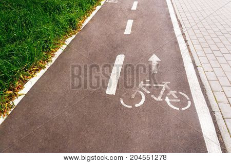 A bicycle path in a public park designed to ensure safety on a bicycle. Toning.