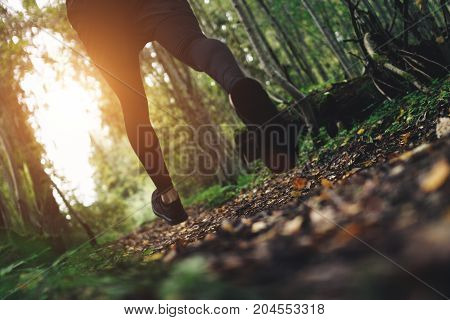 Athletes Legs Close-up In Sportswear And Shoes. Sportsman Quickly Runs On Trail In  Forest. Intentio