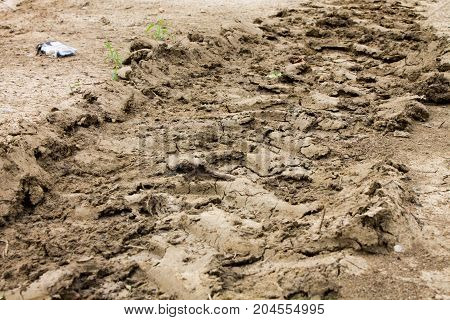 Dried earth excavated. Imprint of agricultural machine.