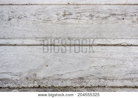 Wooden birch textured boards that have become white-gray from the sun background