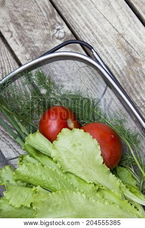 Salad tomato fennel on a wooden light gray white table top view