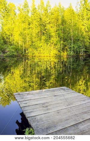 Empty wooden pier near a small forest pond