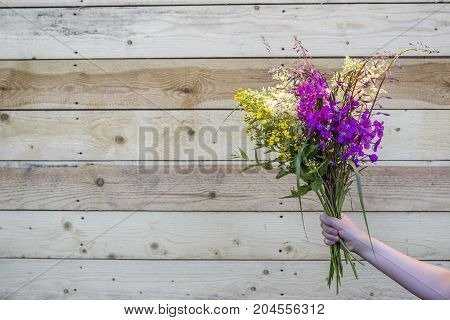 A bouquet of wild wildflowers in hands